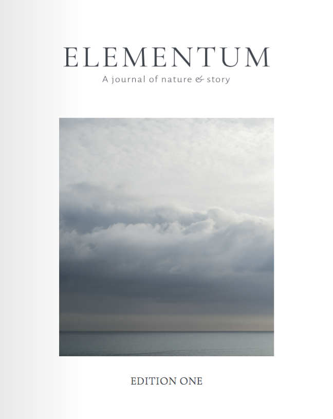 Elementum Edition 1 Cover
