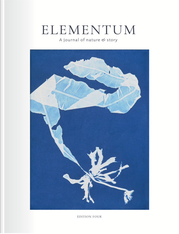 Elementum Edition 4 Cover Picture